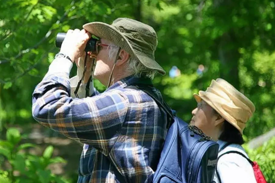 The Top 5 Benefits of Bird Watching and Birding