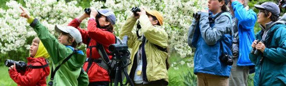Top 3 Things to look for in Bird Watching Binoculars