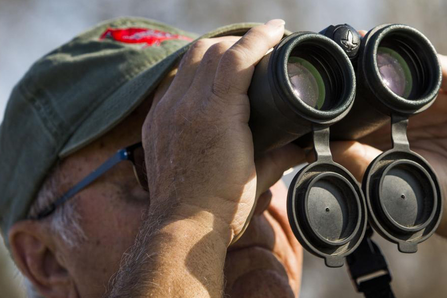 How to Use Birding Binoculars with Glasses