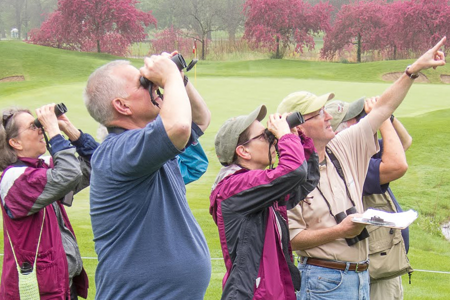 Top 5 Tips from a Veteran Bird Watcher