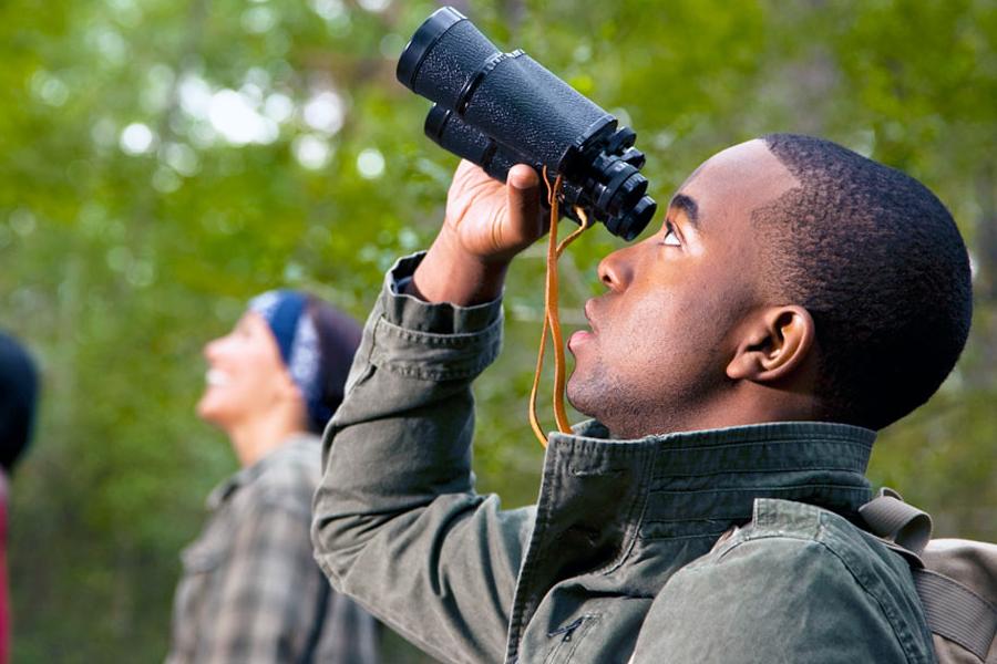 Top 5 Tips from a Veteran Bird Watcher