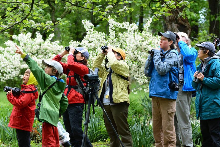 Top 3 Things to look for in Bird Watching Binoculars