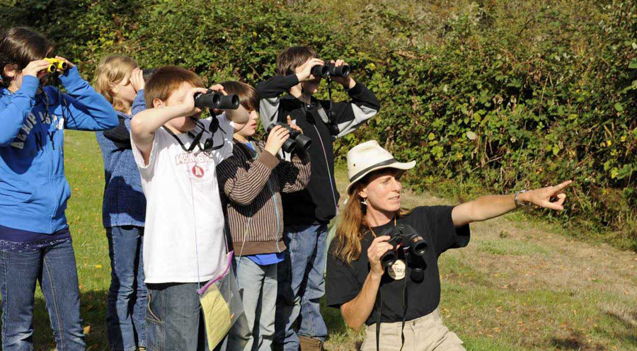 What Magnifications are best for Birding Binoculars
