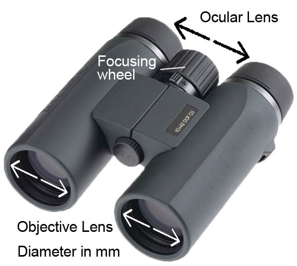 Objective Lens Binoculars